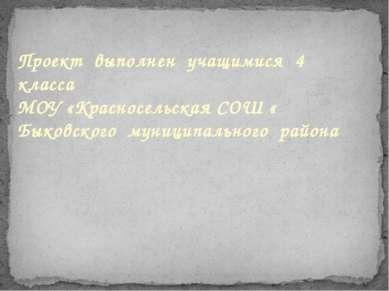 Проект выполнен учащимися 4 класса МОУ «Красносельская СОШ « Быковского муниц...