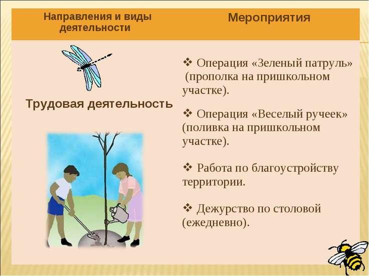 Направления и виды деятельности Мероприятия Трудовая деятельность Операция «З...