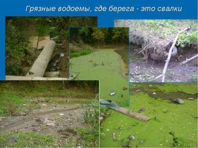 Грязные водоемы, где берега - это свалки