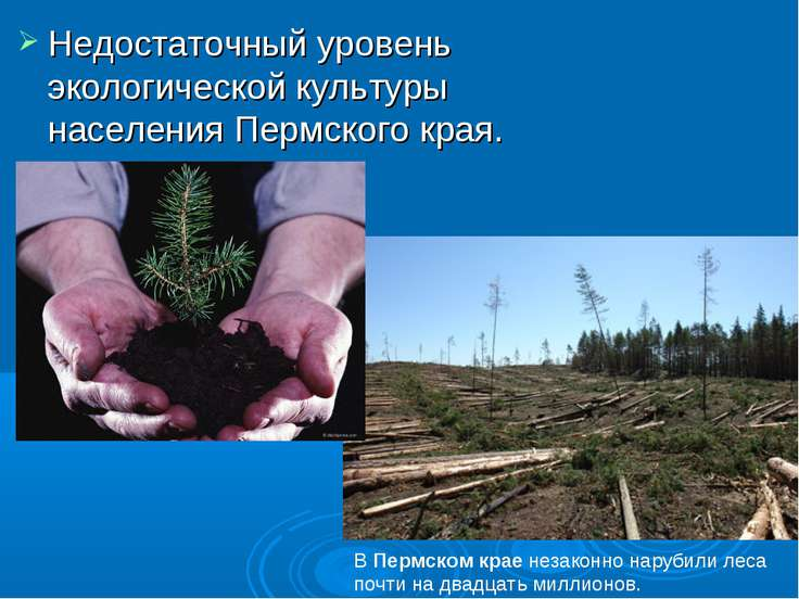 Недостаточный уровень экологической культуры населения Пермского края. ВПерм...