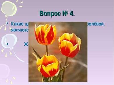 Вопрос № 4. Какие цветы, по мнению Наташи Королёвой, являются вестниками разл...