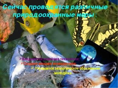 Сейчас проводятся различные природоохранные меры : Внедряются новейшие технол...