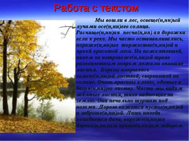 Работа с текстом Мы вошли в лес, освеще(н,нн)ый лучами осе(н,нн)его солнца. Р...