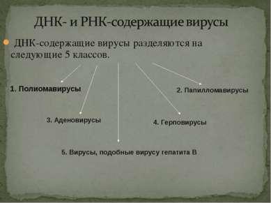 ДНК-содержащие вирусы разделяются на следующие 5 классов. 1. Полиомавирусы 2....