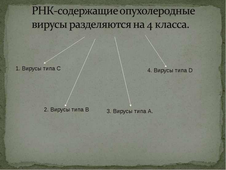 1. Вирусы типаС 2. Вирусы типаВ 3. Вирусы типаА. 4. Вирусы типаD