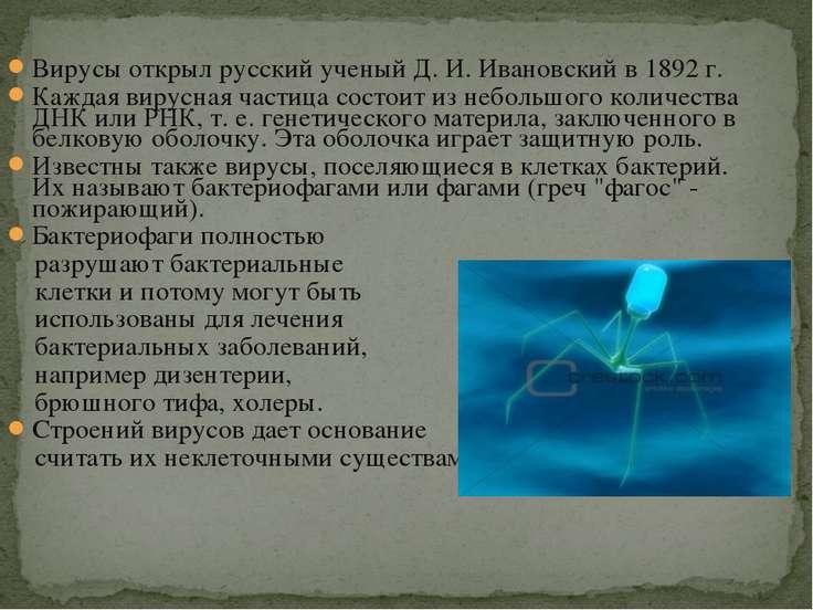 Вирусы открыл русский ученый Д. И. Ивановский в 1892 г. Каждая вирусная части...