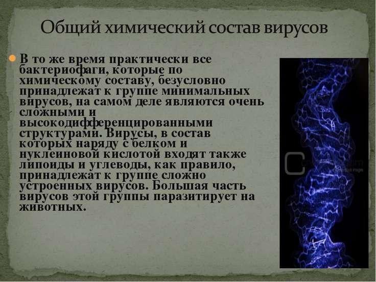 В то же время практически все бактериофаги, которые по химическому составу, б...