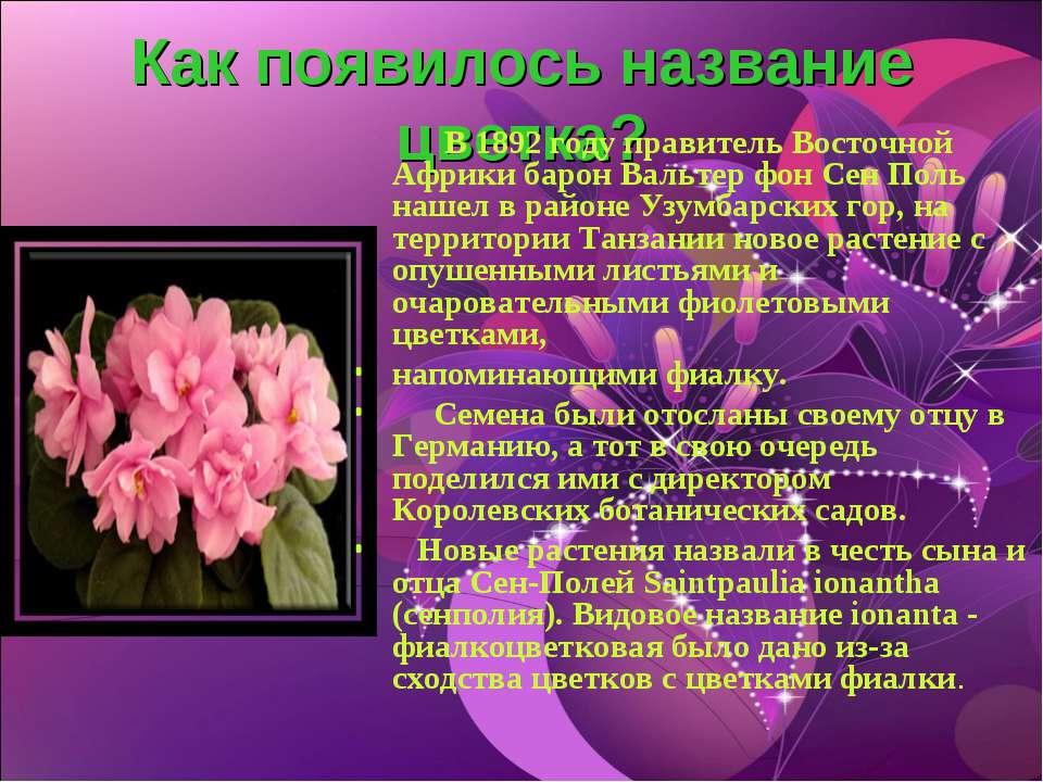 Как появилось название цветка? В 1892 году правитель Восточной Африки барон В...