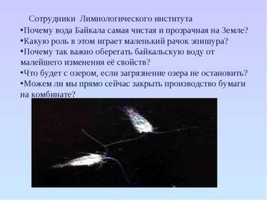 Сотрудники Лимнологического института Почему вода Байкала самая чистая и проз...