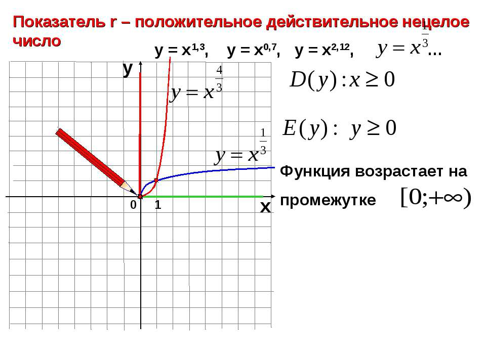0 Показатель r – положительное действительное нецелое число 1 х у у = х1,3, у...