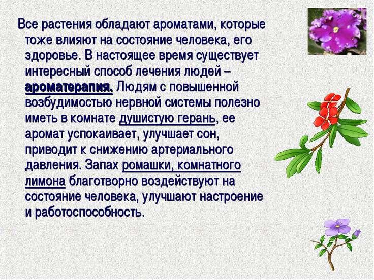 Все растения обладают ароматами, которые тоже влияют на состояние человека, е...