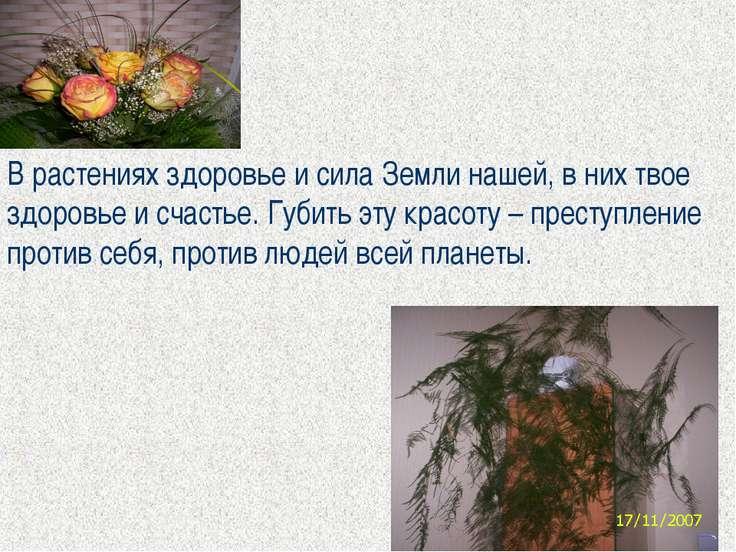 В растениях здоровье и сила Земли нашей, в них твое здоровье и счастье. Губит...
