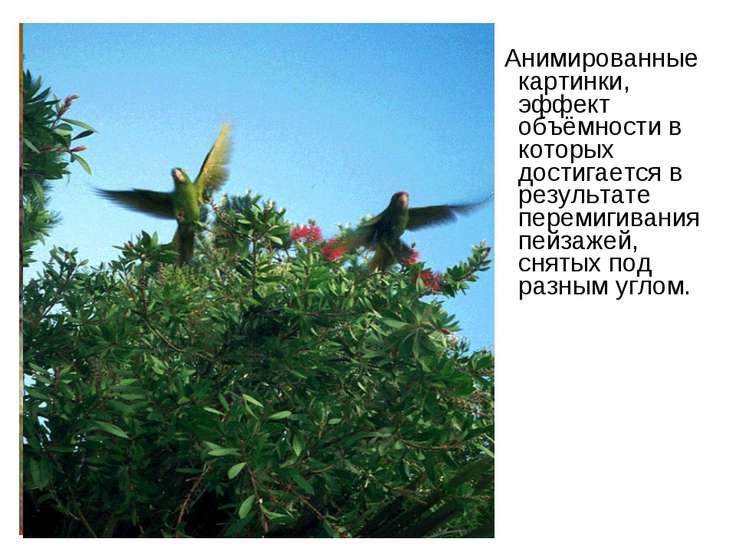 Анимированные картинки, эффект объёмности в которых достигается в результате ...