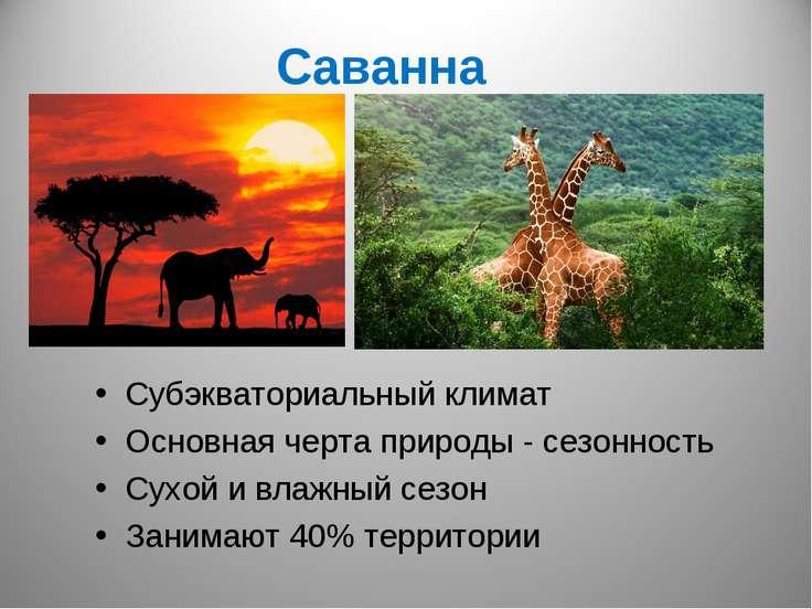 Саванна Субэкваториальный климат Основная черта природы - сезонность Сухой и ...