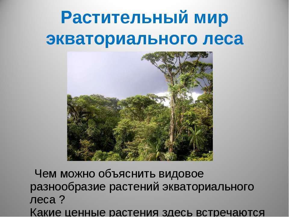 Растительный мир экваториального леса Чем можно объяснить видовое разнообрази...
