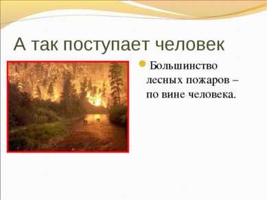 А так поступает человек Большинство лесных пожаров – по вине человека.