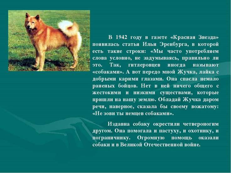 В 1942 году в газете «Красная Звезда» появилась статья Ильи Эренбурга, в кото...
