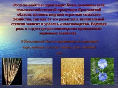 Растениеводство производит более половины всей сельскохозяйственной продукции...