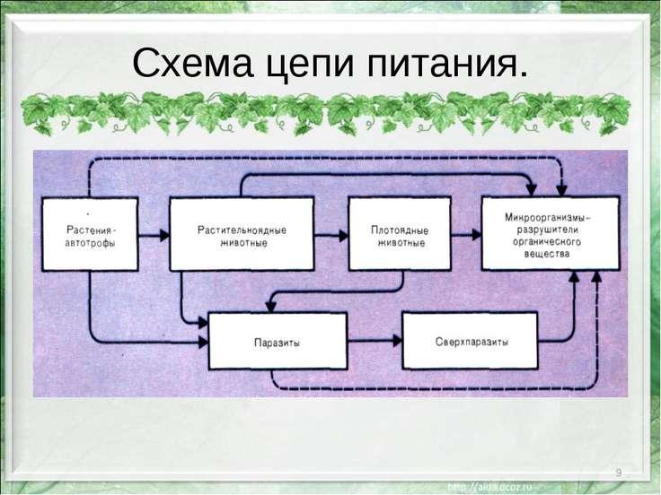 Схема цепи питания. *