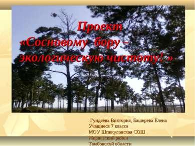 Проект «Сосновому бору – экологическую чистоту! » Гундяева Виктория, Башерева...