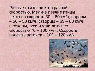 Разные птицы летят с разной скоростью. Мелкие певчие птицы летят со скорость ...