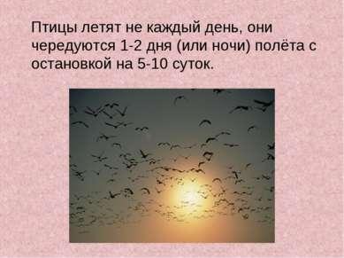 Птицы летят не каждый день, они чередуются 1-2 дня (или ночи) полёта с остано...