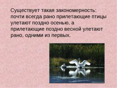 Существует такая закономерность: почти всегда рано прилетающие птицы улетают ...