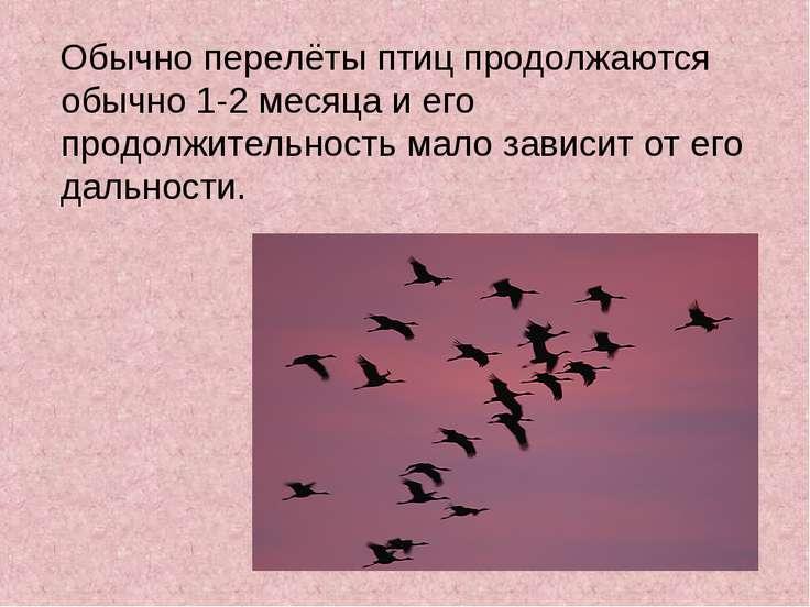Обычно перелёты птиц продолжаются обычно 1-2 месяца и его продолжительность м...