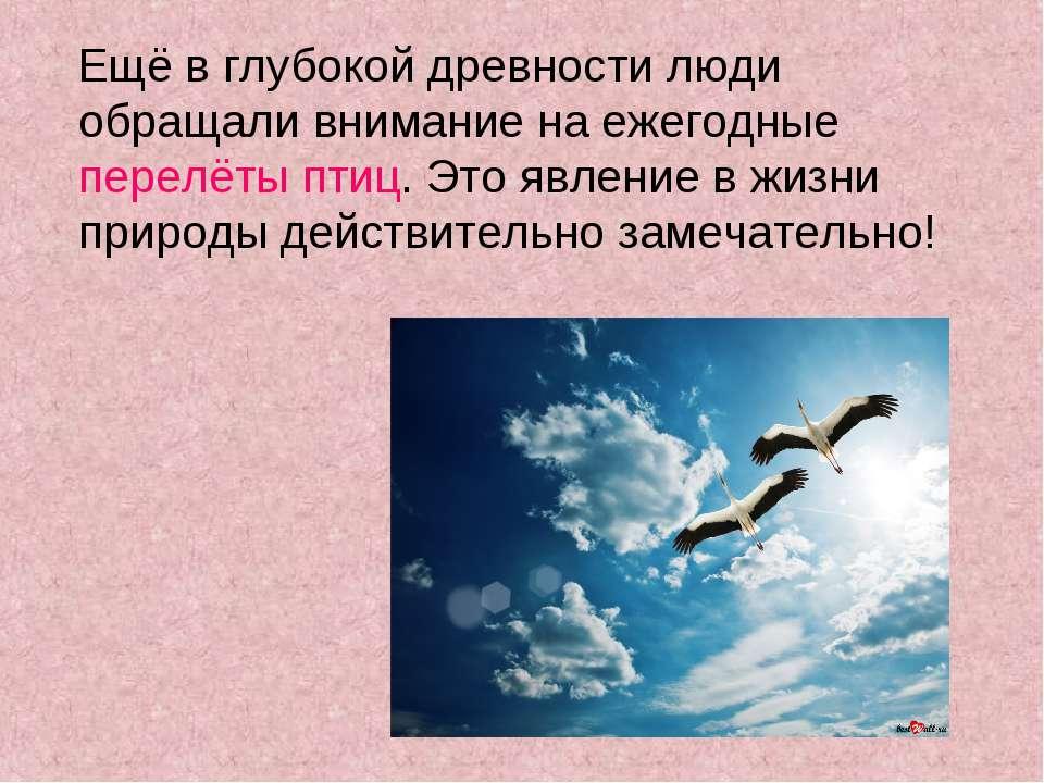Ещё в глубокой древности люди обращали внимание на ежегодные перелёты птиц. Э...