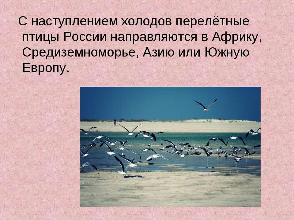 С наступлением холодов перелётные птицы России направляются в Африку, Средизе...