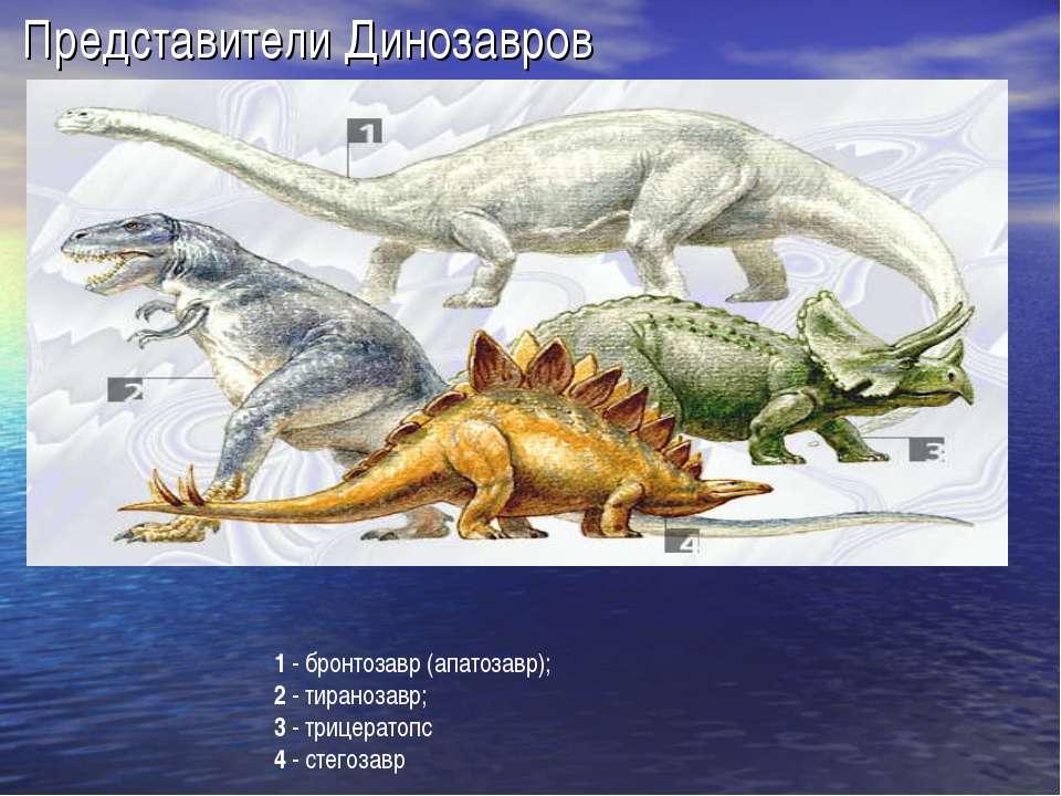 Представители Динозавров 1 - бронтозавр (апатозавр); 2 - тиранозавр; 3 - триц...