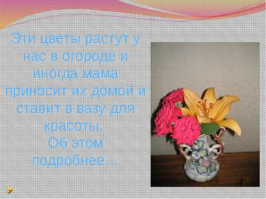 Эти цветы растут у нас в огороде и иногда мама приносит их домой и ставит в в...