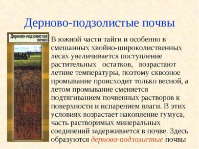Дерново-подзолистые почвы В южной части тайги и особенно в смешанных хвойно-ш...