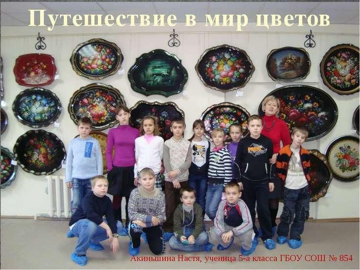 Путешествие в мир цветов Акиньшина Настя, ученица 5-а класса ГБОУ СОШ № 854