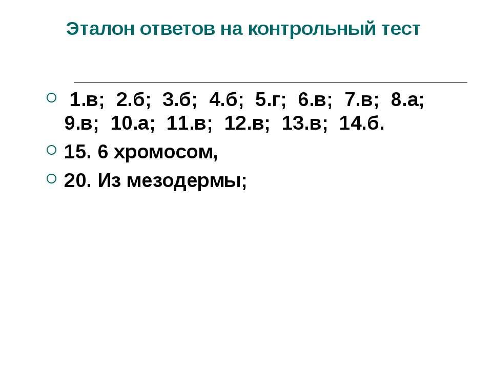 Эталон ответов на контрольный тест 1.в; 2.б; 3.б; 4.б; 5.г; 6.в; 7.в; 8.а; 9....