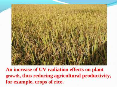 An increase of UV radiation effects on plant growth, thus reducing agricultur...