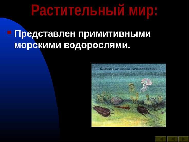 Растительный мир: Представлен примитивными морскими водорослями.