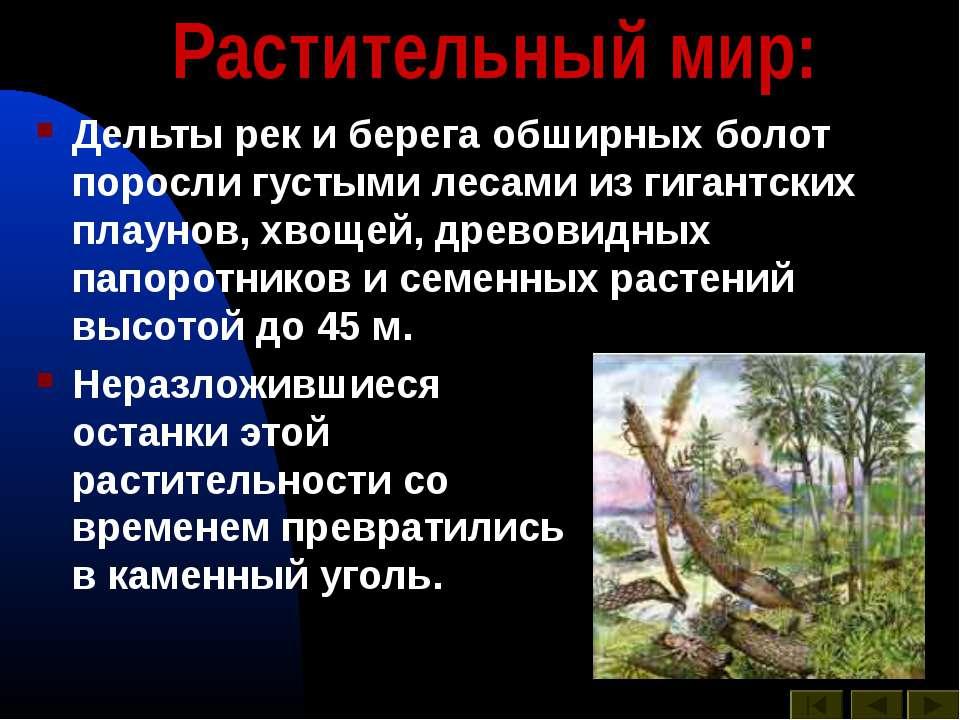 Растительный мир: Дельты рек и берега обширных болот поросли густыми лесами и...