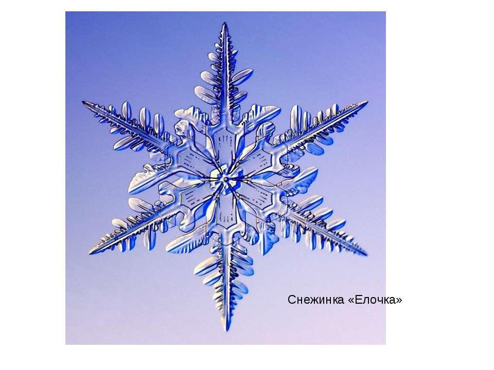 Снежинка «Елочка»