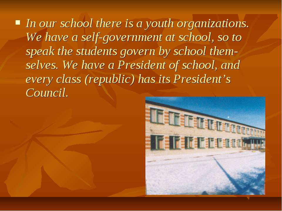 In our school there is a youth organizations. We have a self-government at sc...