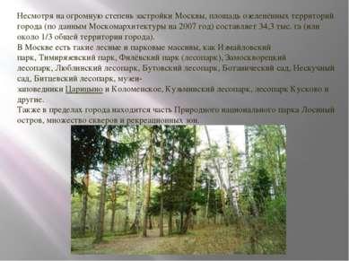 Несмотря на огромную степень застройки Москвы, площадь озеленённых территорий...