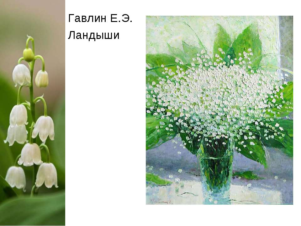 Гавлин Е.Э. Ландыши