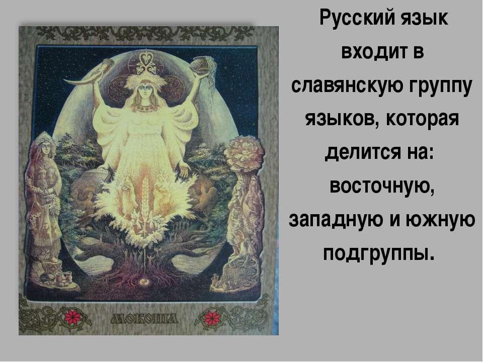 Русский язык входит в славянскую группу языков, которая делится на: восточну...