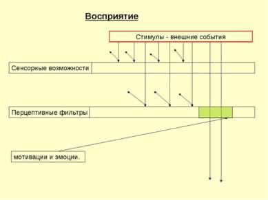 Восприятие Cенсорные возможности Перцептивные фильтры мотивации и эмоции. Сти...