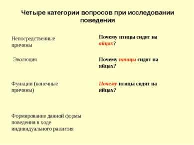 Четыре категории вопросов при исследовании поведения Непосредственные причины...