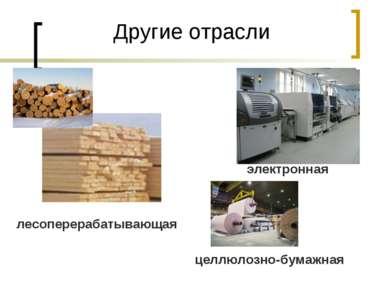 Другие отрасли лесоперерабатывающая электронная целлюлозно-бумажная