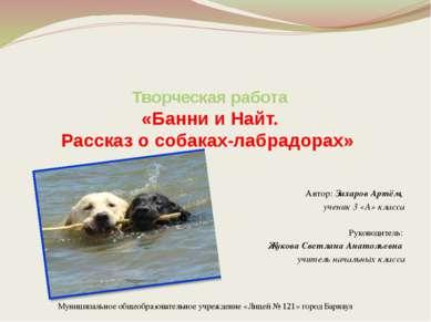 Творческая работа «Банни и Найт. Рассказ о собаках-лабрадорах» Автор: Захаров...