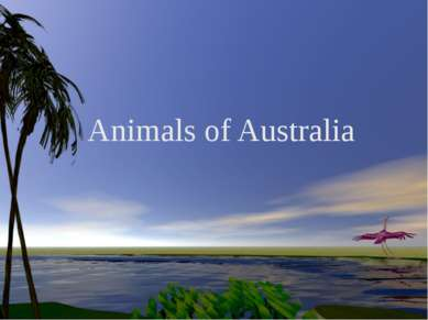 Animals of Australia