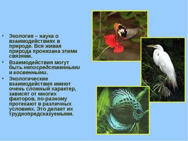 Экология – наука о взаимодействиях в природе. Вся живая природа пронизана эти...