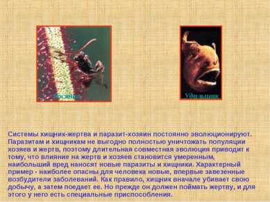 Системы хищник-жертва и паразит-хозяин постоянно эволюционируют. Паразитам и ...